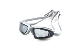 Aryca goggles adults gray