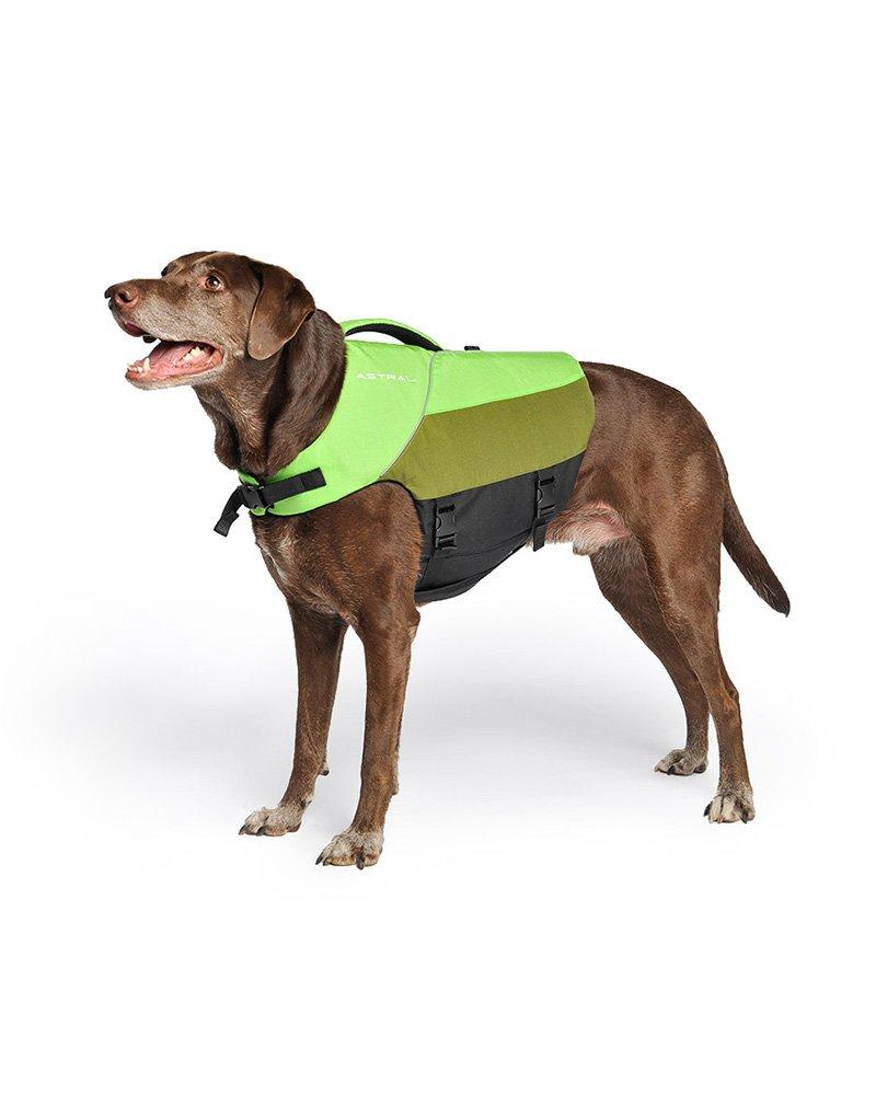 Astral Bird Dog Canine PFD