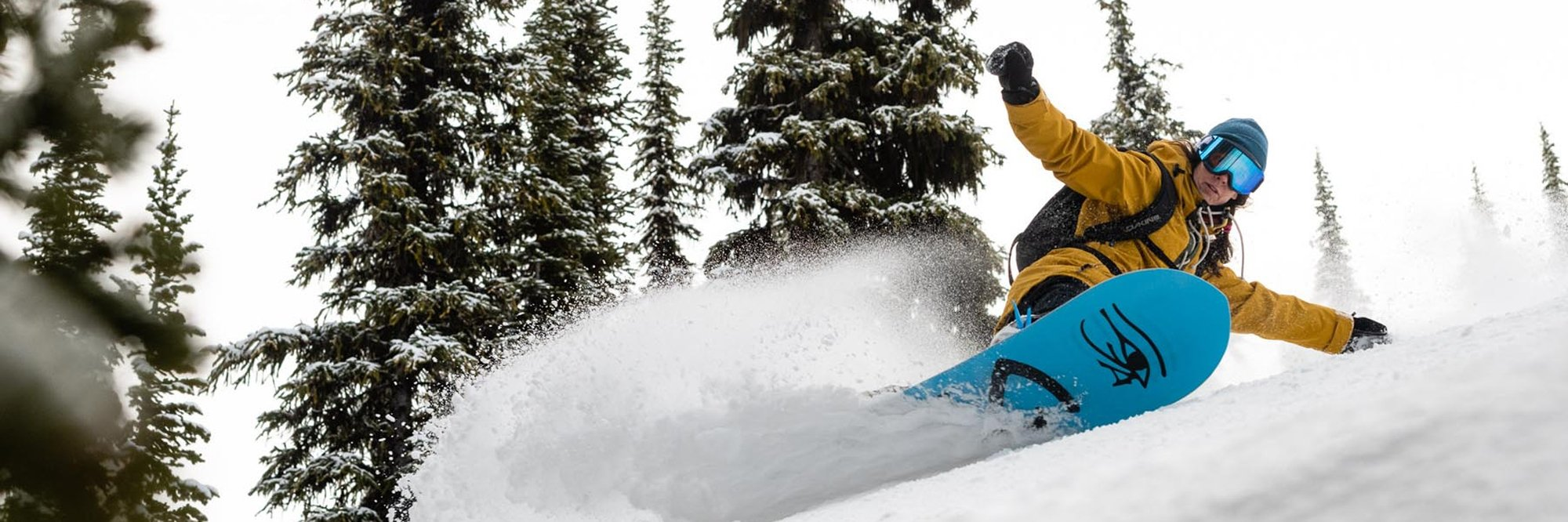 womens snowboards seattle shop
