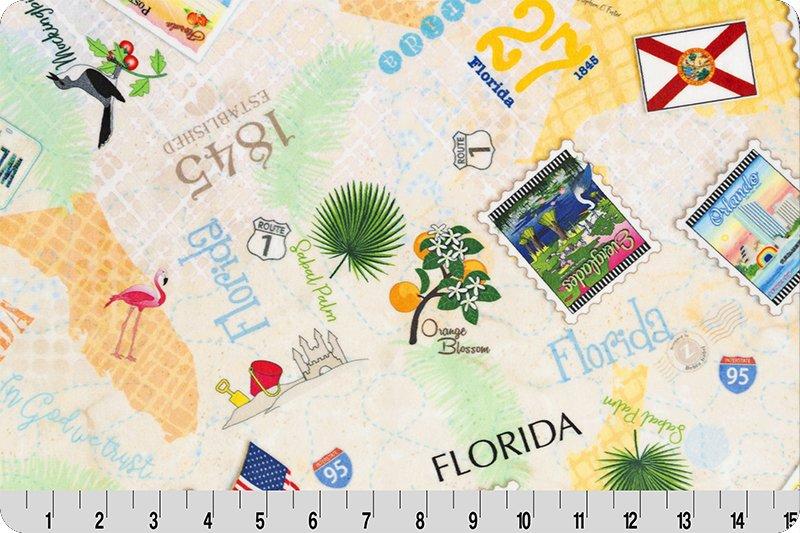 Digital Cuddle Zebra Patterns States Florida