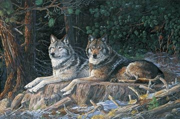 NATURESCAPES - 28 PANEL - RESTING POINT WOLVES - 21938 94
