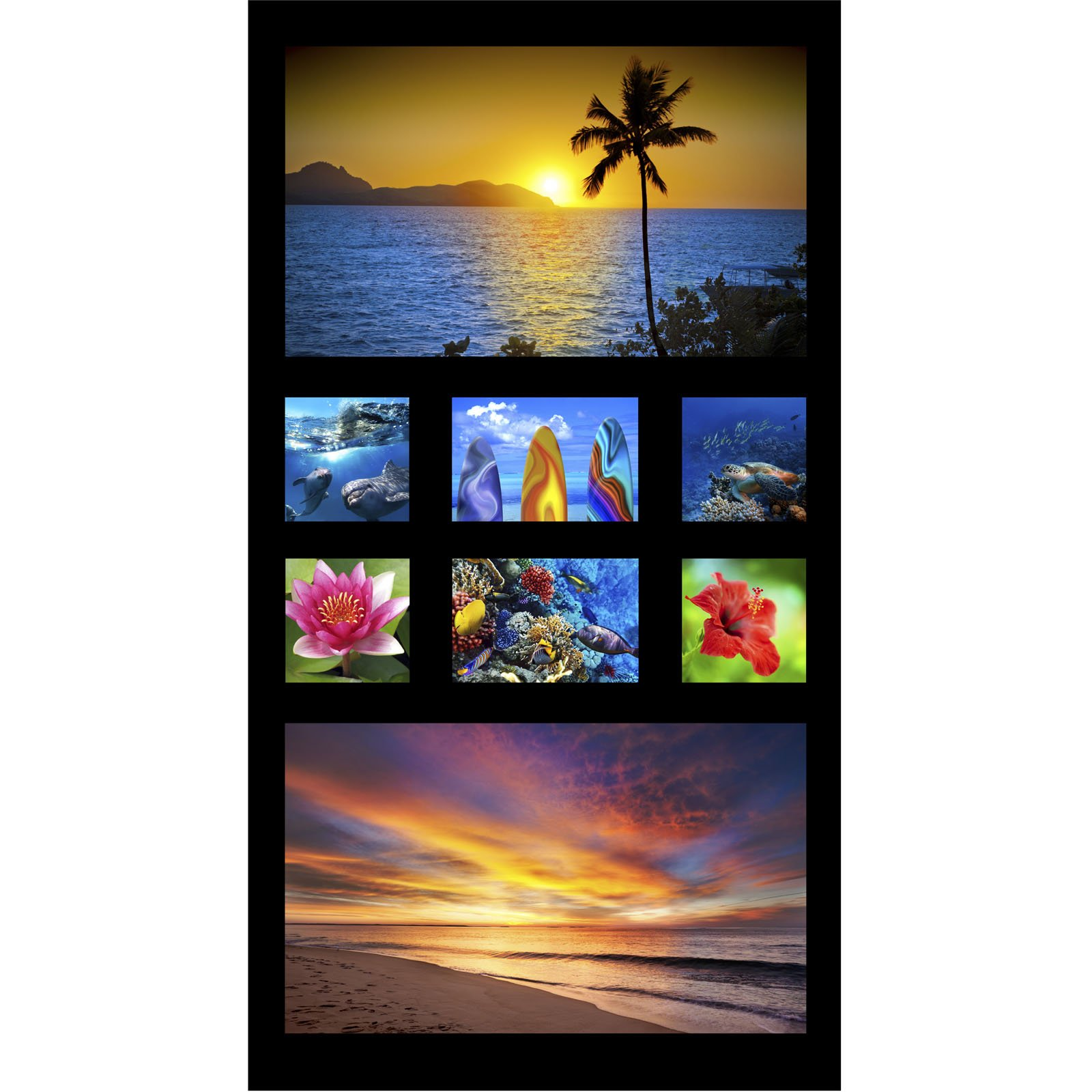 SALUTE TO AMERICA - 24 SINGLE PANEL - PARADISE - DIGITAL PRINT - 1DPAR 1