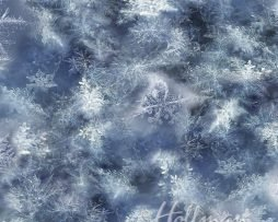 CALL OF THE WILD - SNOWFLAKE - BLUE - Q4458-7