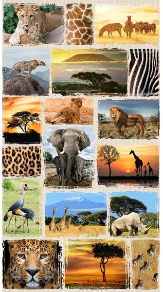 WILD KINGDOM - 24 SINGLE PANEL - VIGNETTE OF ANIMALS - DIGITAL PRINT - Q4492-565