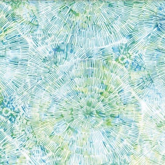 HOFF- Seaholly Dandelion Burst