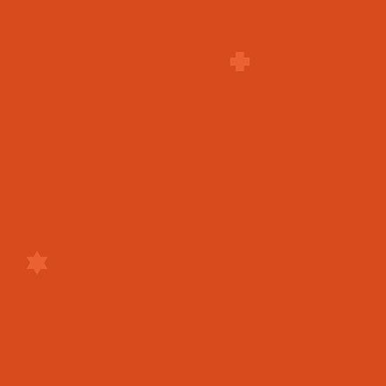 AND- Insignia 2018 Dark Orange