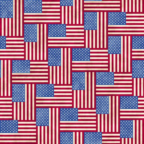 BLANK- Land of the Free Flags