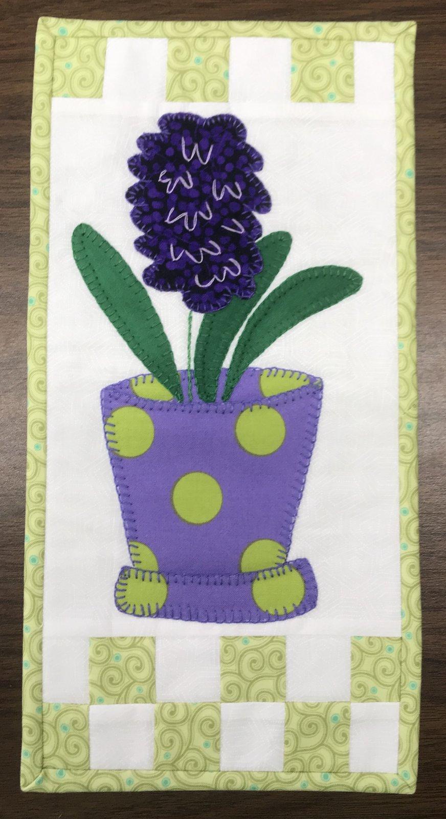 KIT- Giant Hyacinth