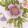 KAUF- Avery Hill Blossom Loose Floral on Pale Lavender