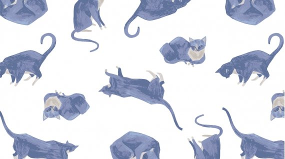DEARS- Ginko Nomi Blue Cats on White