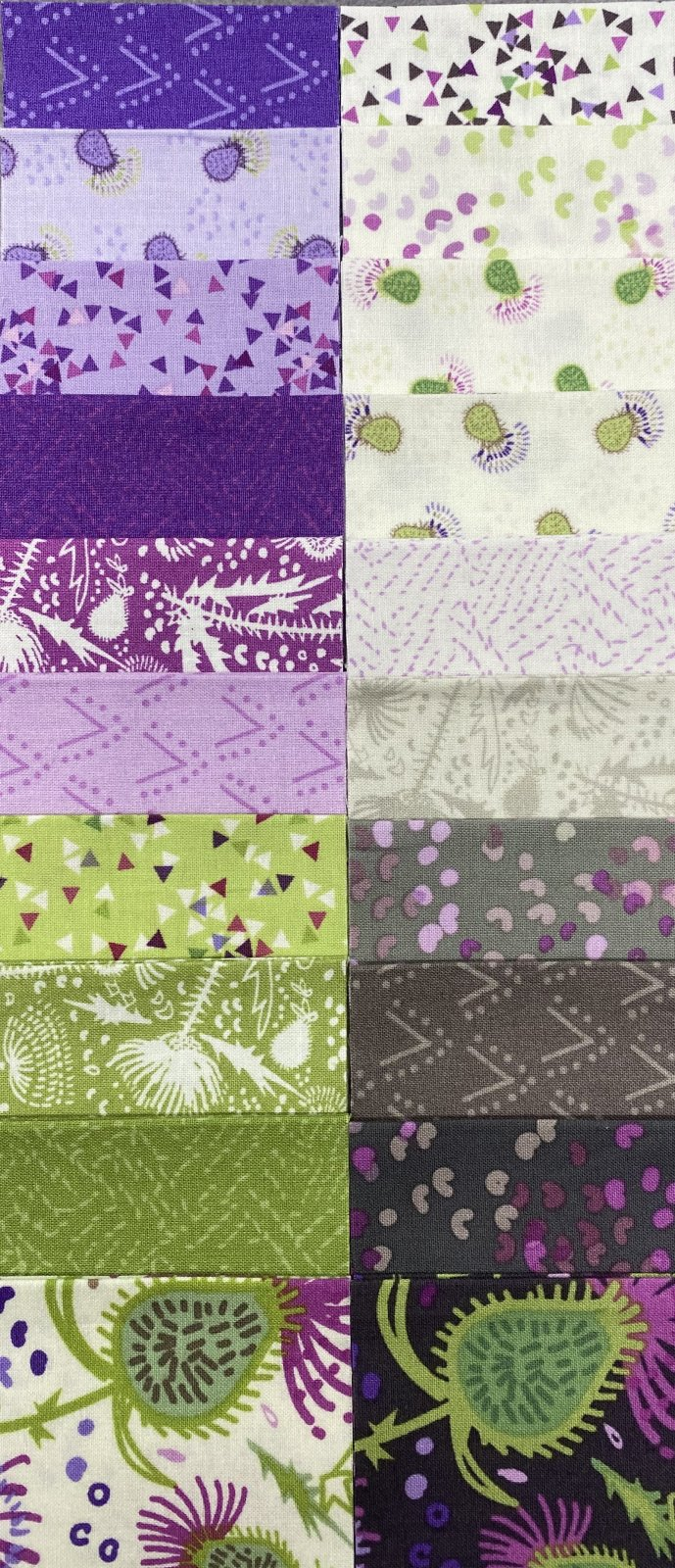 Thistle Patch 2 1/2 Strips
