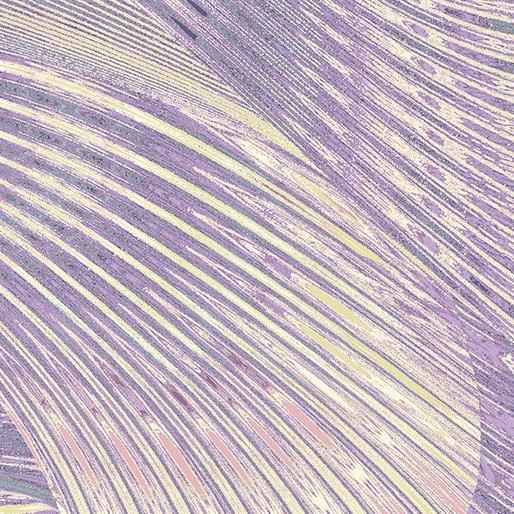 Benartex - New Wave 06067 61 Iris