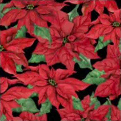 Wilmington Prints Christmas Joy Black with Red Pon 1665 33775 937