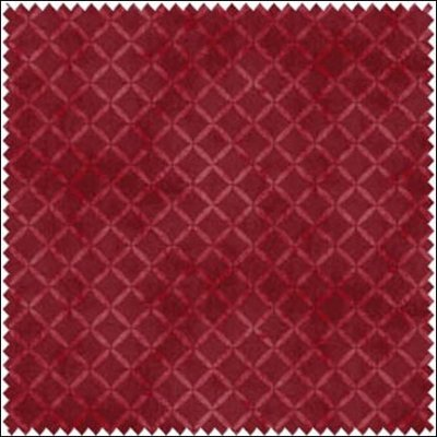 E. E. Schenck Fresh Water Designs Quilters Garden Red Checks FWDQUG08 R