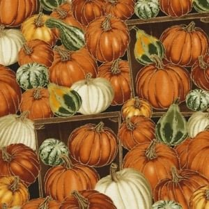 Timeless Treasures Harvest CM5206 Pumpkin