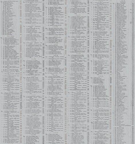A-8341-C Encyclopedia Galactica