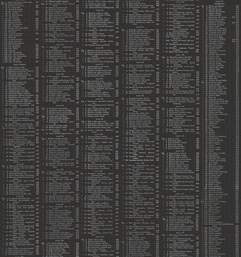 A-8341-MSK Encyclopedia Galactica