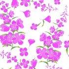 Wildflowers Y1894-1