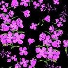 Wildflowers Y1894-3
