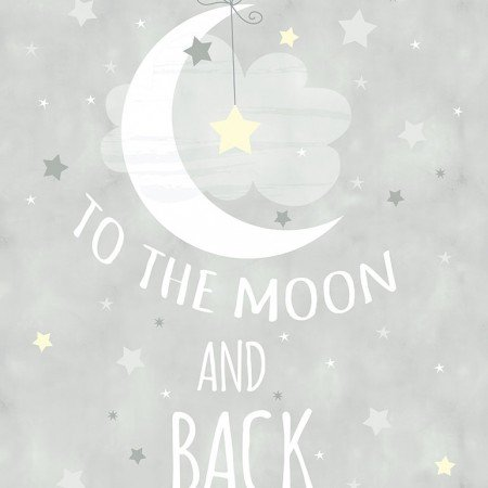 Gail C6286 Gray 24 To the Moon & Back Panel