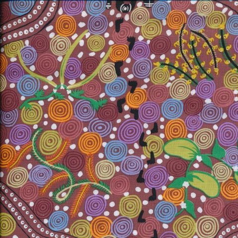 Corroboree Brown by Donna McNamara