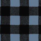 Wild Life Flannel, Blue/Black Check