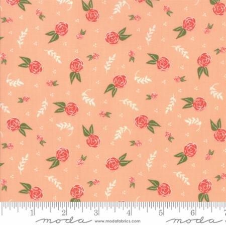 Clover Hollow Peachy 37552 15