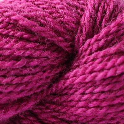 WinterburnDK Rhubarb