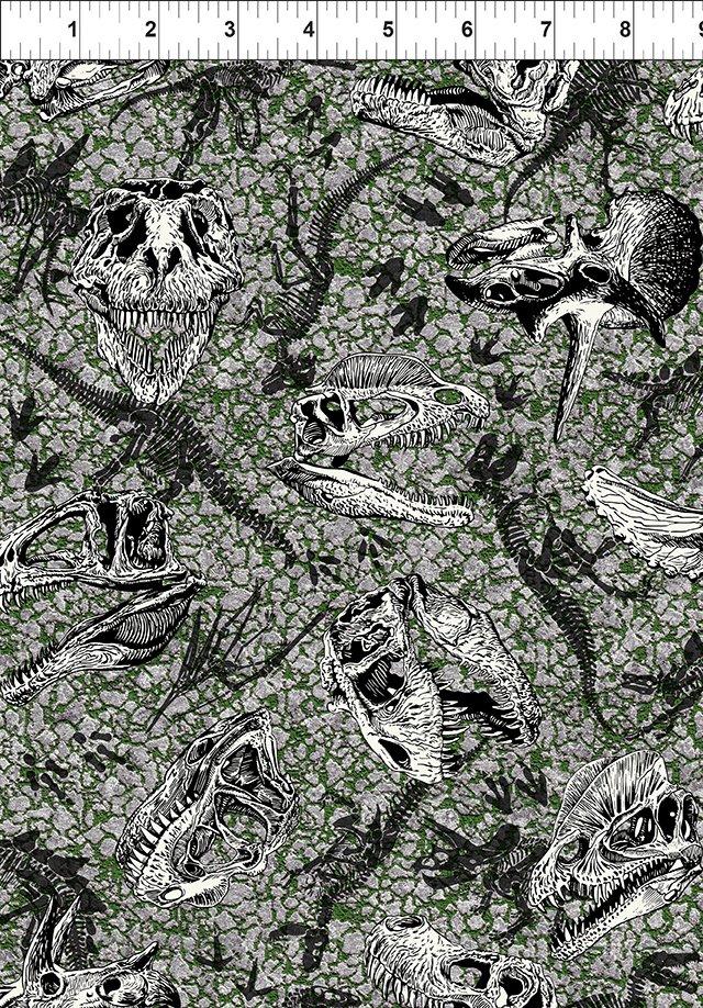 Jurassic Dinosaur Fossils Gray