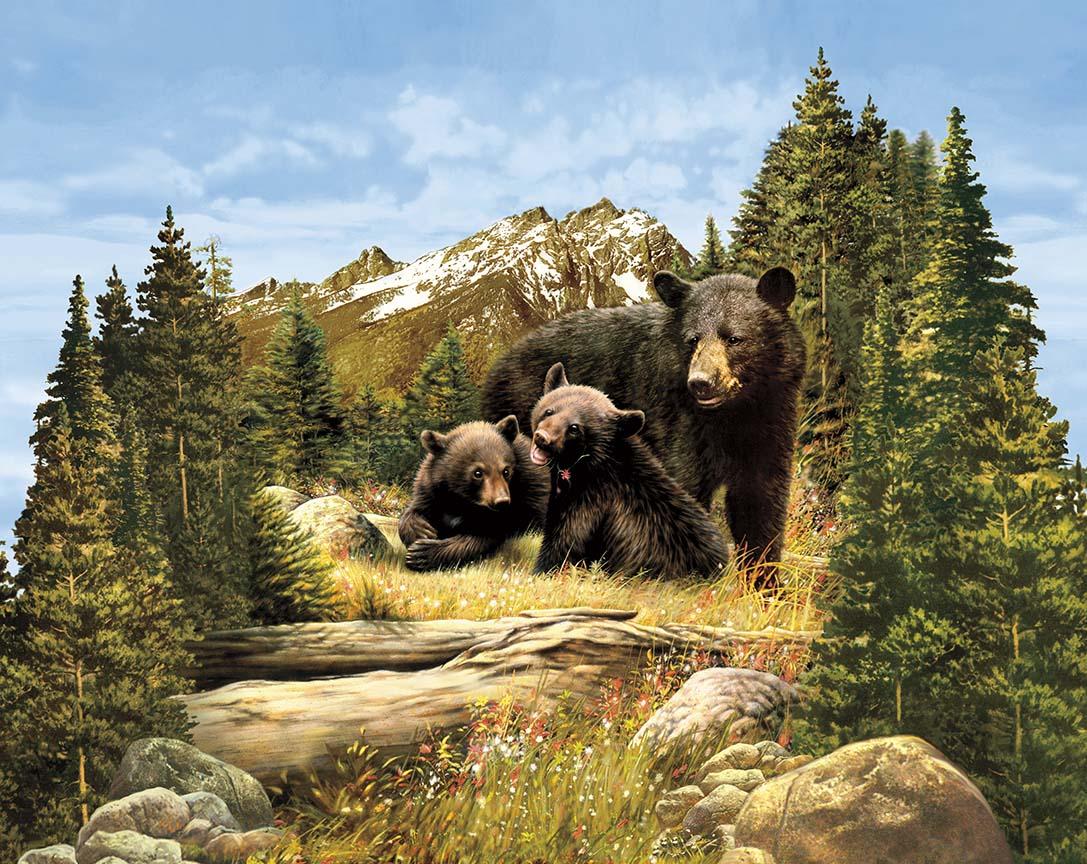 Majestic Panel Bear