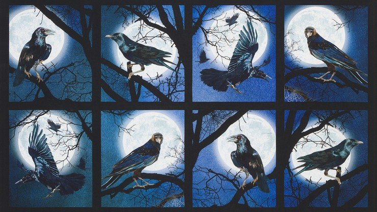 Raven Moon Panel AWHD18484282 Panel