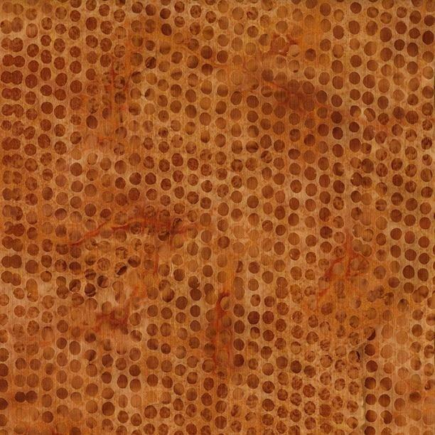 Pumpkin Patch Dot 121704200 Apricot