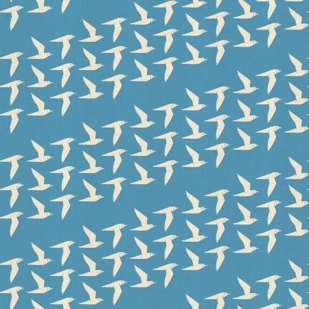 By the Seaside Fly Along in Sky