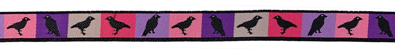 1/2 Woven Trim AK Spring Ravens
