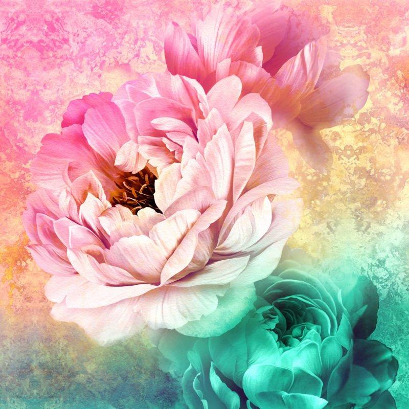 Royal Beauty Peonies Panel 5830701 Pink/Teal