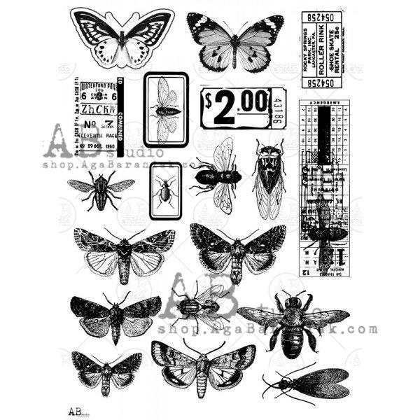 ABstudio - Transparent Foil - 0019