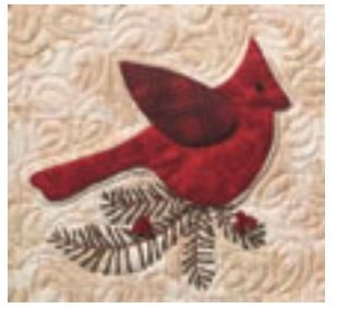 5017FQD Eleanor Burns Quilt in a Day Lodgepole Cardinal Fusible Web