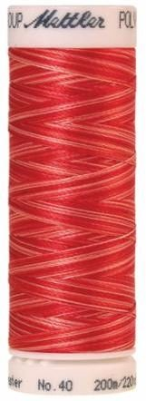 4820-9924 Mettler 100 % Polyester Variegated Embroidery Thread 220 yards