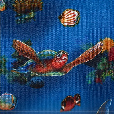 ASJ-11842-60 Rainbow Cove Ocean Royal