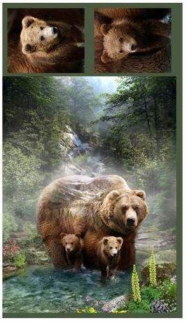 DCPGRIZZLYBR Shannon Cuddle Grizzly Panel 34in x 44in & two 13x13in Pillow Panels