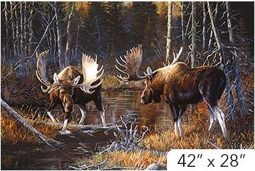 DP21825-36 Northcott Majestic Moose  28.5 by 42