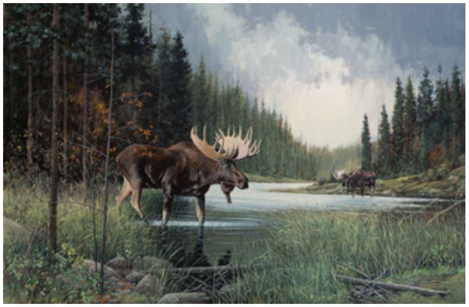 DP22943-34 Northcott Moose Lake Panel 38 x 42