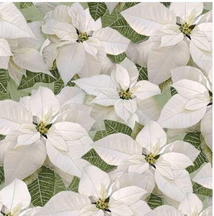 HOLIDAY-CM6960-WHITE Timeless Treasures White Metallic Poinsettia