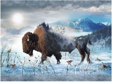 Q4427-555-BISON Hoffman of California Call of the Wild Digital Print Bison