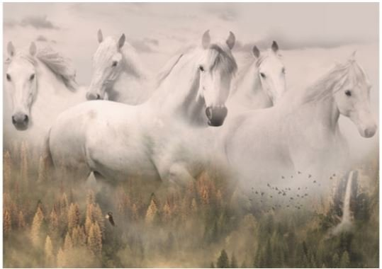 R4592-112 Hoffman of California Call of the Wild Ghost Horses