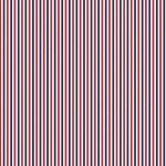 Riley Blake Designs Patriotic Stripes C495-Patriotic '