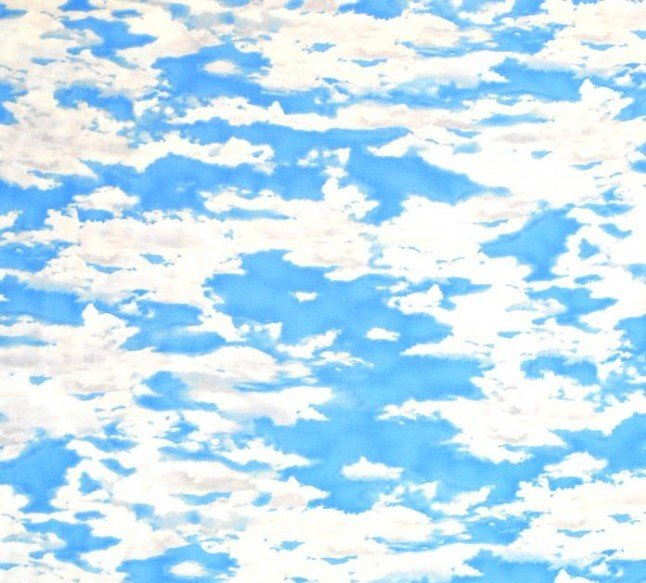 Quilting Treasures 24404-B Our National Parks Blue Clouds '