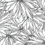Benatrex Midnight Poppies BEN5425-09 Daisy `