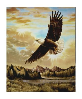 Magestic Digital Panel with Bald Eagle PD6480-Eagle  `