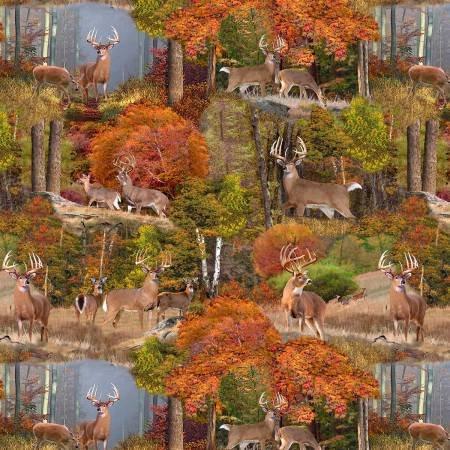 Forest - Digital Panel `
